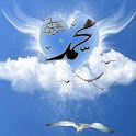 Gulls In Fly n Heart In Cloud logo