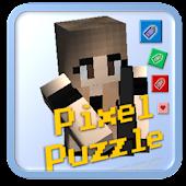 Pixel Puzzle - Gun Survival