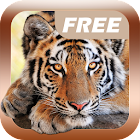 Animal Sounds Games for kids icon