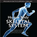 Skeletal System icon