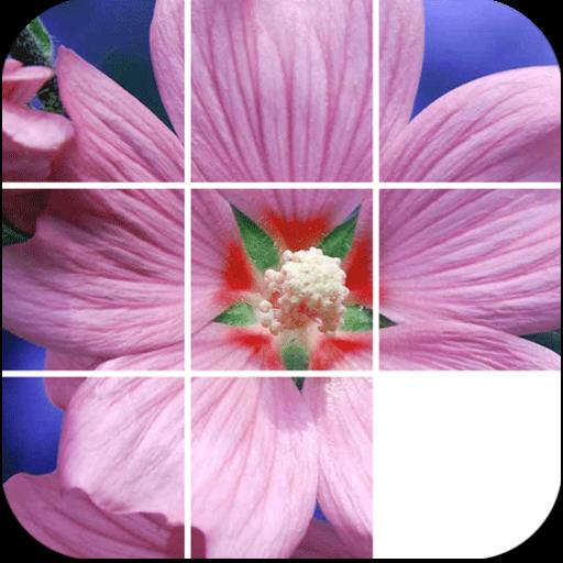 Flowers Slide Puzzle LOGO-APP點子