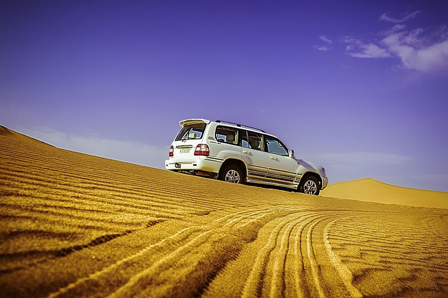 Leaving a mark...  by Altaf Ahmed - Landscapes Deserts ( desert, 2013, dunebashing, landscape, toyota, gpp, cars, desert safari, altaf, uae, safari, summer, landcruiser,  )