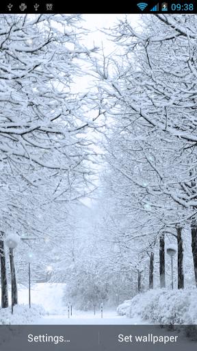 冬季动态壁纸