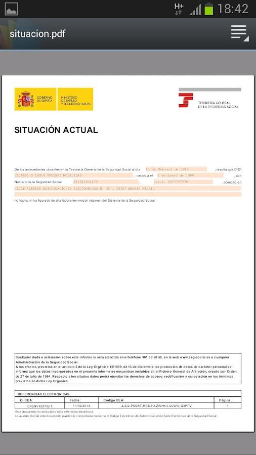 Seg-Social Informe Situación- screenshot