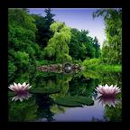 3D Lake HD Live Wallpaper
