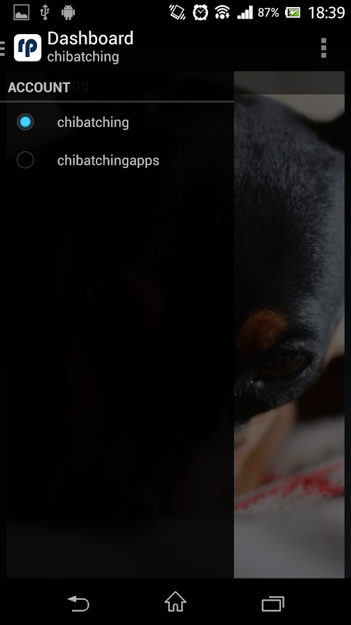 reprintr - Tumblr photo viewer- screenshot