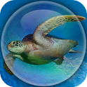 Sea Turtle Underwater icon