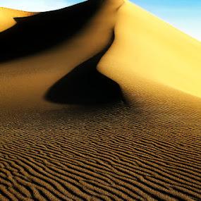 Mesquite Sand Dunes - Ripples & Curves by Lawayne Kimbro - Landscapes Deserts ( death valley, sand, dunes, desert, dry, ©kimbrophoto, peak, dune, ©kimbro photography, ©lawayne kimbro photography, sand dunes, hot, mesquite, , #GARYFONGDRAMATICLIGHT, #WTFBOBDAVIS )