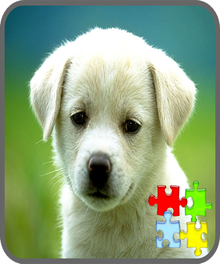 Dogs Puzzle Games