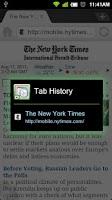 Screenshot of Dolphin Tab History