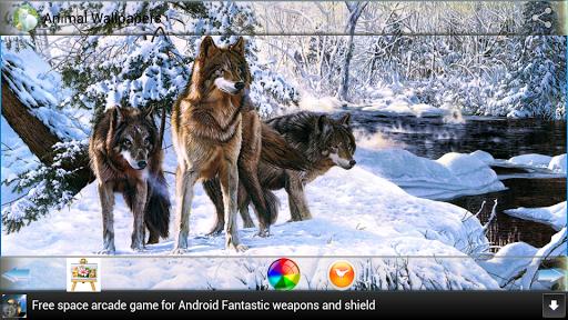 娛樂必備APP下載 Animal Wallpapers 好玩app不花錢 綠色工廠好玩App