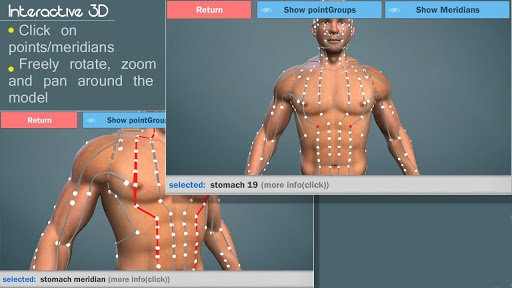 Easy Acupuncture 3D-MED