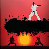 Pocket Karate Online