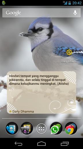 Daily Dhamma
