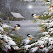 Snow Birds Live Wallpaper