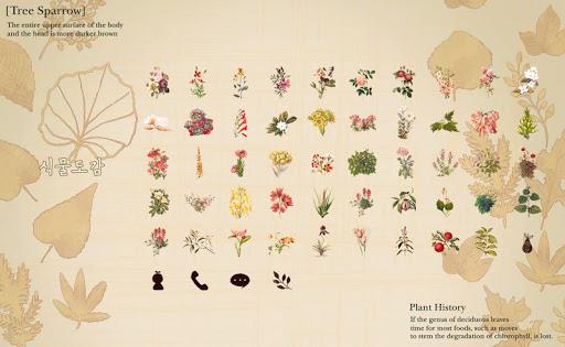 식물도감 런처플래닛 테마