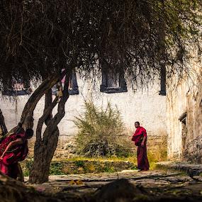 Hide n' Seek by Nguyen Kien - People Street & Candids ( monk, monastery, tibetan, children, game )
