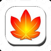 Kaede IME UserDictionary Manag