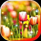 Tulips Wild Nature LWP