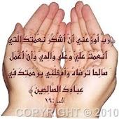 Arab,Egypt news