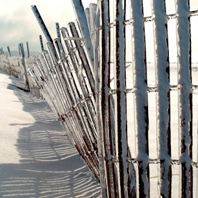 Fenced by Theodore Schlosser - Landscapes Beaches ( fence, grand haven, ice, beach )