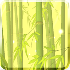 Bamboo Forest Free L.Wallpaper icon