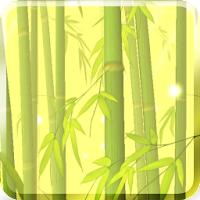 Bamboo Forest Free L.Wallpaper 2.0