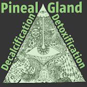 Pineal Gland Detox Guide