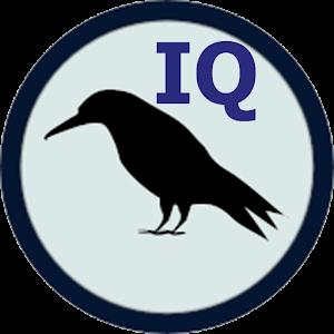 Raven IQ Test