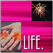 Tracks of Life - Livewall -