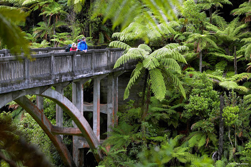 Bridge_to_Nowhere_Whanganui_River - Returning World War 1 servicemen once worked the land within what is now the Whanganui National Park in the southwest of New Zealand's North Island. Jet boat and kayak tours provide easy access to this fascinating site deep in the forest. There's also a multi-day-day hiking or one-day mountain biking trail. It's not a destination for cruise ship day trippers, but a good destination for a longer stay on the North Island.