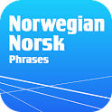 Learn Norwegian Phrasebook