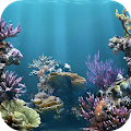 Download Amazing Aquarium Wallpaper APK