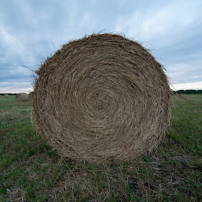 bale by Jacob Hoedl - Landscapes Prairies, Meadows & Fields