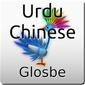 Urdu-Chinese Dictionary