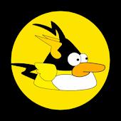 Ninja Bird X