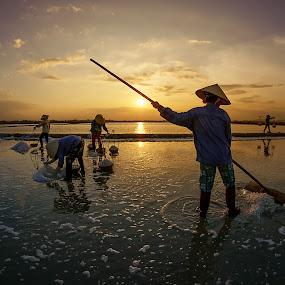 Harvesting salt by Thảo Nguyễn Đắc - People Street & Candids