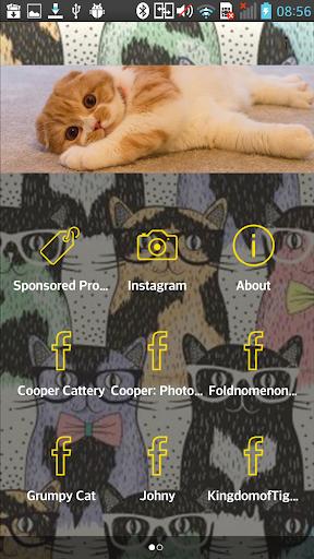 Cooper Cat Club