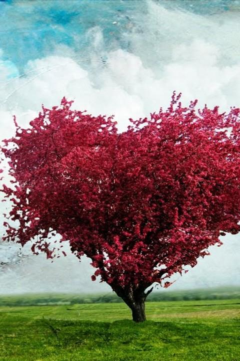 Tree of love live wallpaper - screenshot