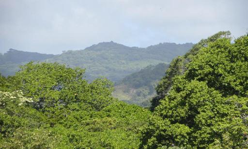 尼加拉瓜壁紙