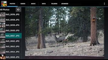 Screenshot of Nexus Photo Viewer