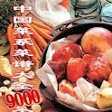 中國菜系菜谱菜譜大全九千個 logo