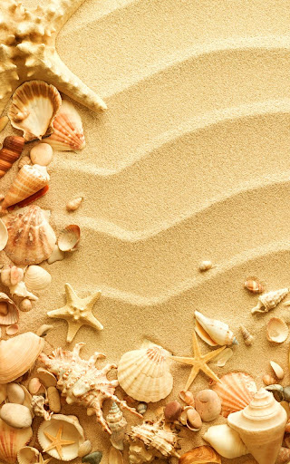 貝殻ライブ壁紙