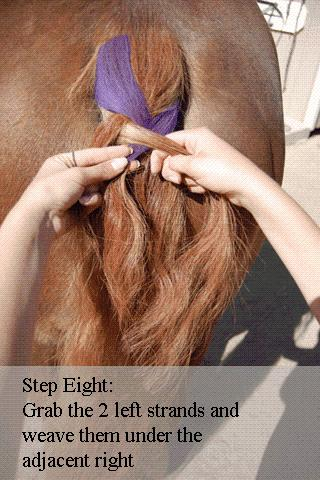 Dutch Braid a Horse Tail - screenshot