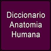 Diccionario Anatomia Humana