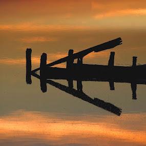 One Way by Anna Tatti - Uncategorized All Uncategorized ( water, reflection, color, lines, pond,  )