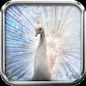 Diamond Peacock Live Wallpaper icon