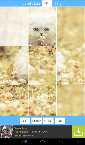 Cute Kitten Puzzle Challenge