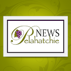 Pelahatchie News icon