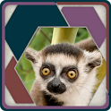 HexSaw - Zoo icon